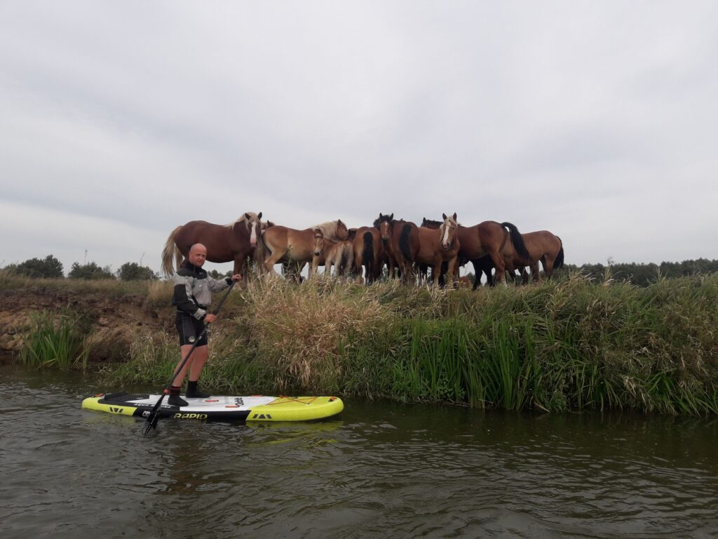 spływ Stand Up Paddle Board Pilicą Biała Góra
